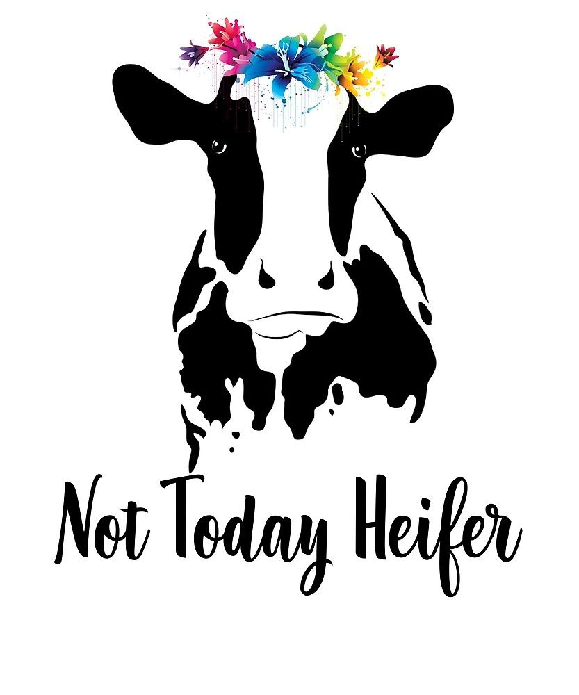 not today heifer svg #380, Download drawings