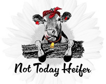 not today heifer svg #385, Download drawings