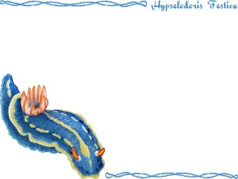 Nudibranch clipart #12, Download drawings