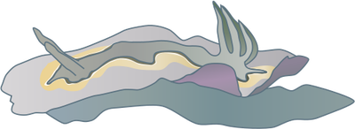 Sea Slug svg #2, Download drawings