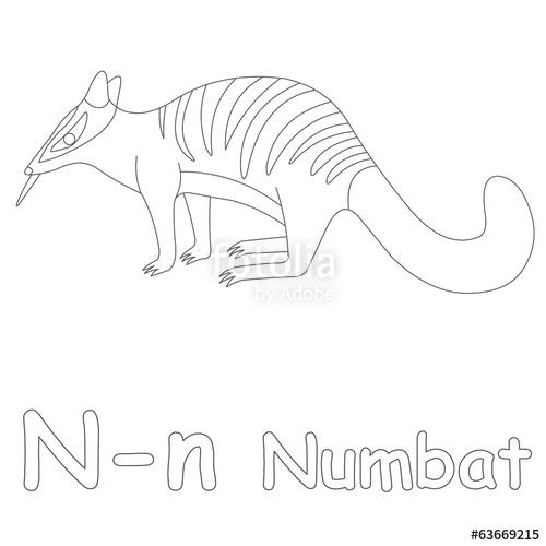 Numbat coloring #10, Download drawings