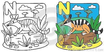 Numbat coloring #3, Download drawings