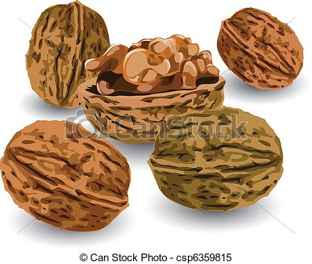 Nut clipart #6, Download drawings