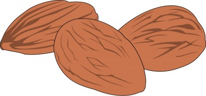 Nut clipart #8, Download drawings