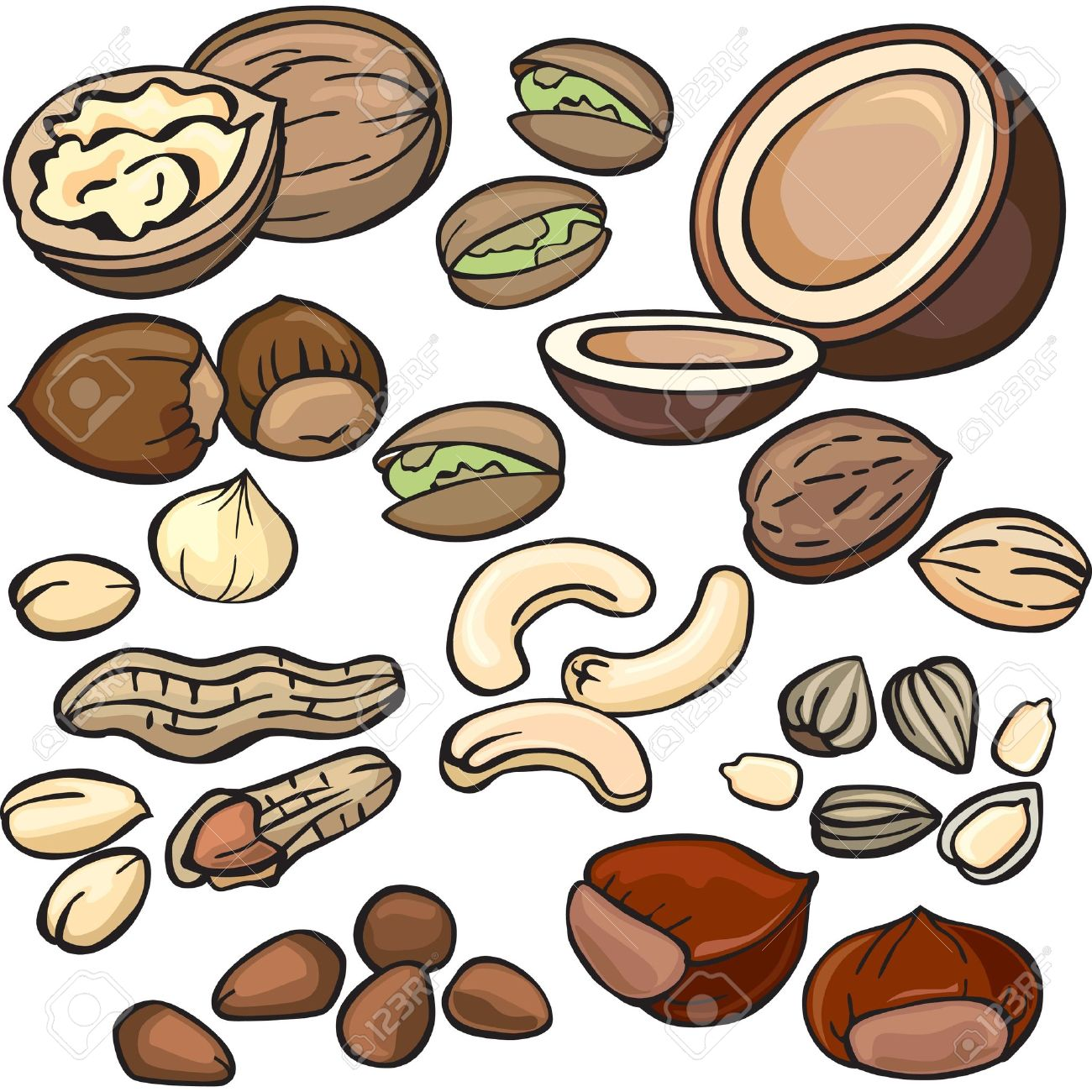 Nut clipart #13, Download drawings