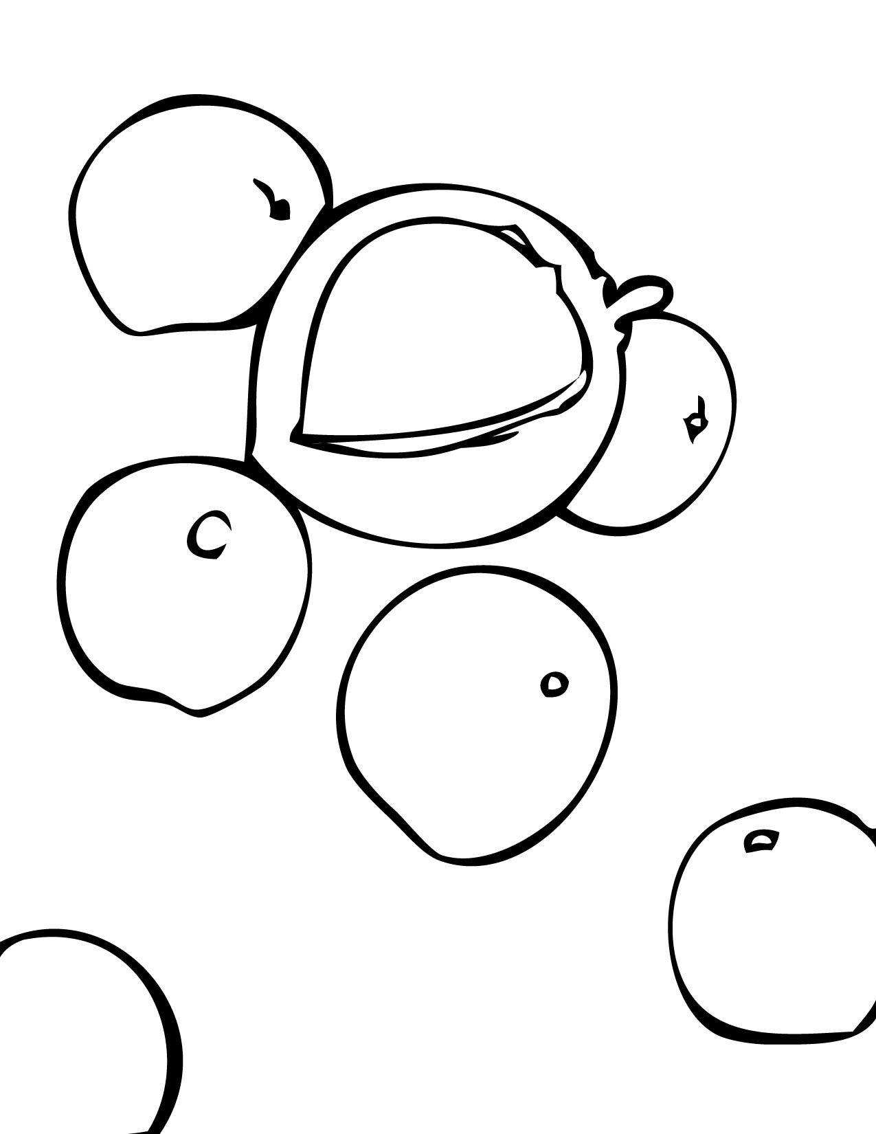 Nut coloring #16, Download drawings
