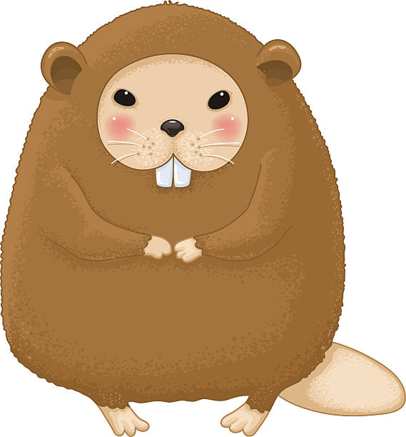Nutria clipart #18, Download drawings