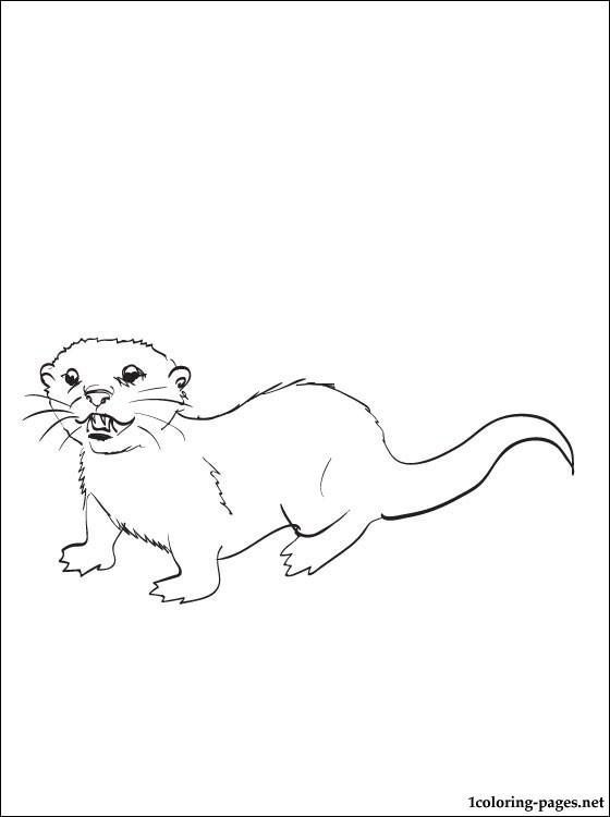Nutria coloring #7, Download drawings