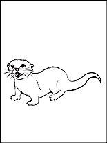 Nutria coloring #12, Download drawings
