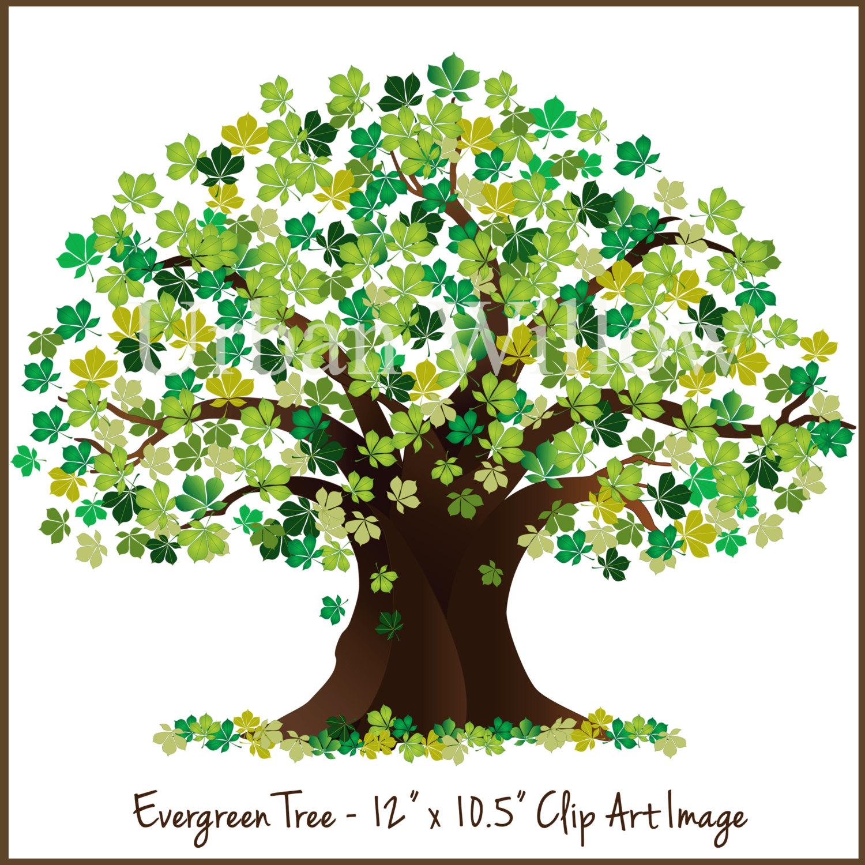 Oak Tree clipart #5, Download drawings