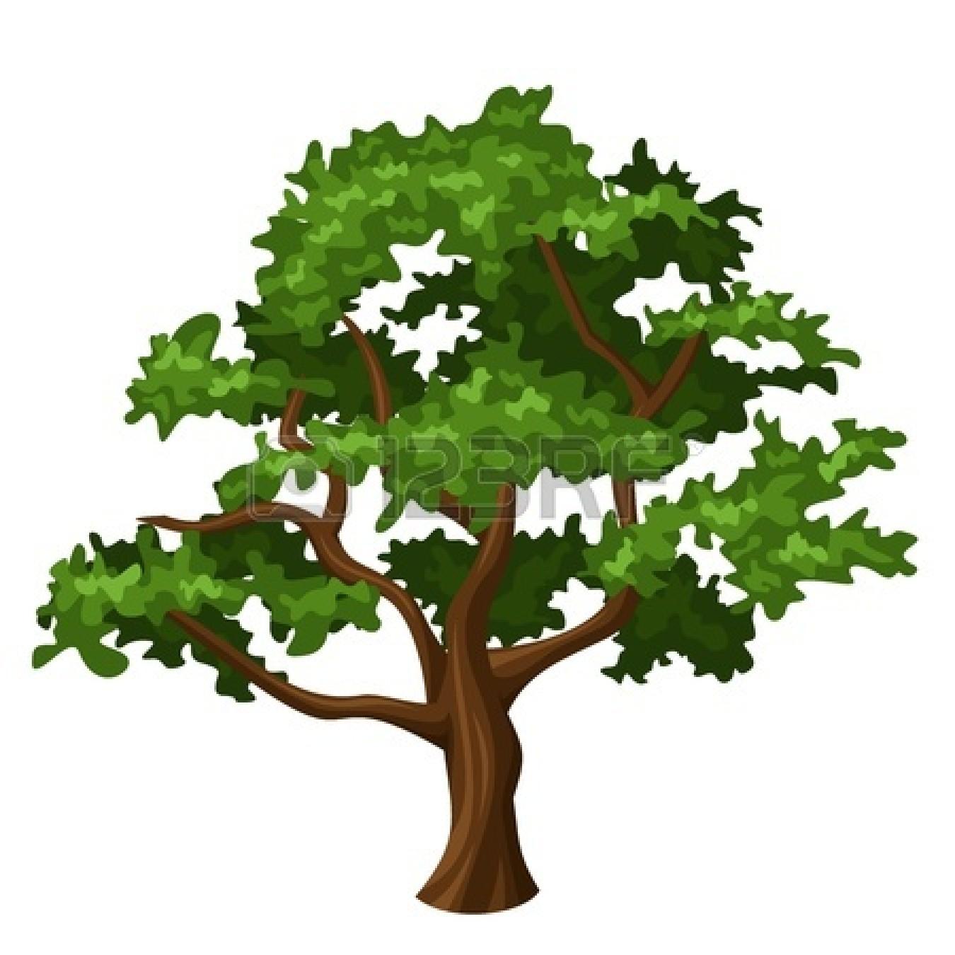 Oak Tree clipart #13, Download drawings