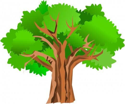Oak Tree clipart #17, Download drawings