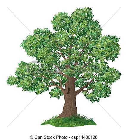 Oak Tree clipart #19, Download drawings