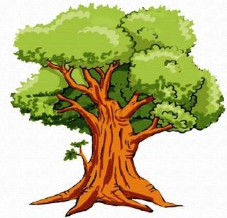 Oak Tree clipart #16, Download drawings