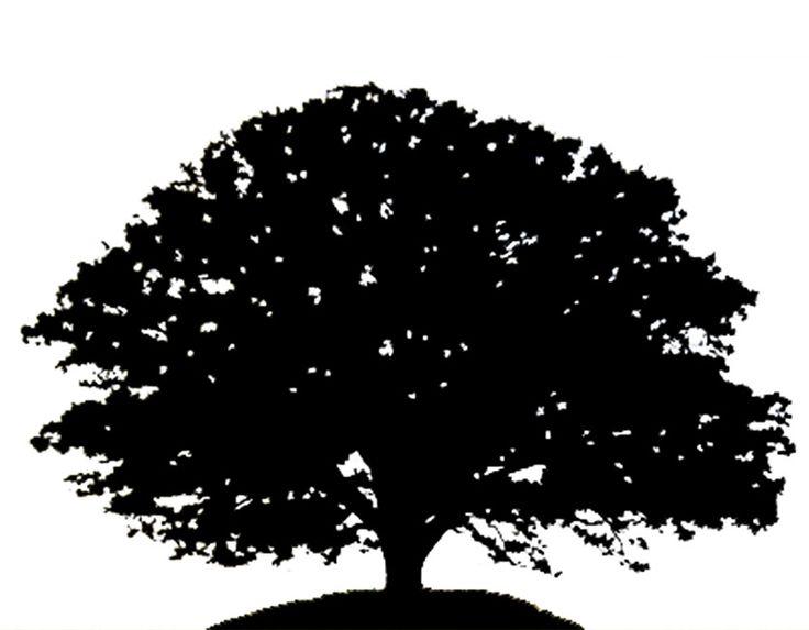 Oak Tree svg #10, Download drawings