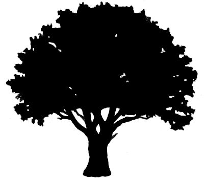 Oak Tree svg #19, Download drawings