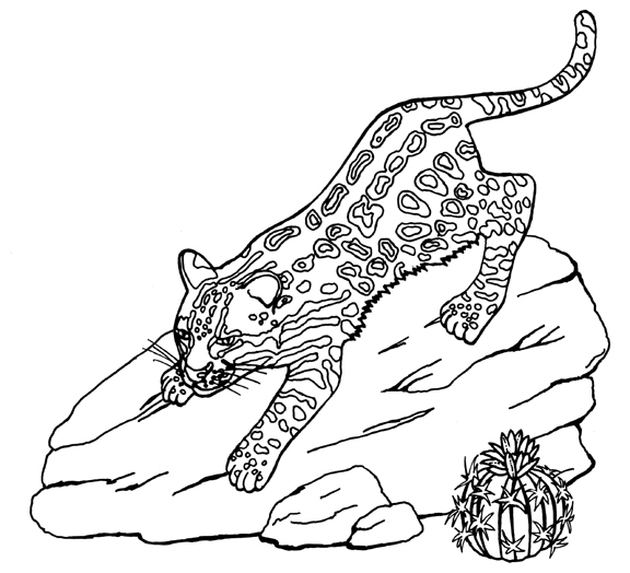Ocelot coloring #20, Download drawings