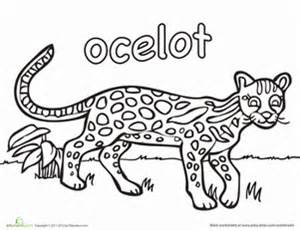 Ocelot coloring #19, Download drawings