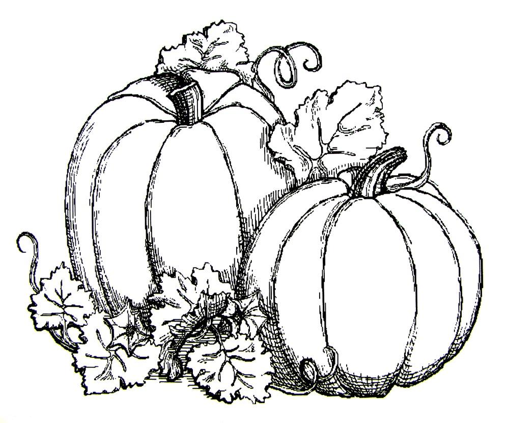 October coloring #3, Download drawings