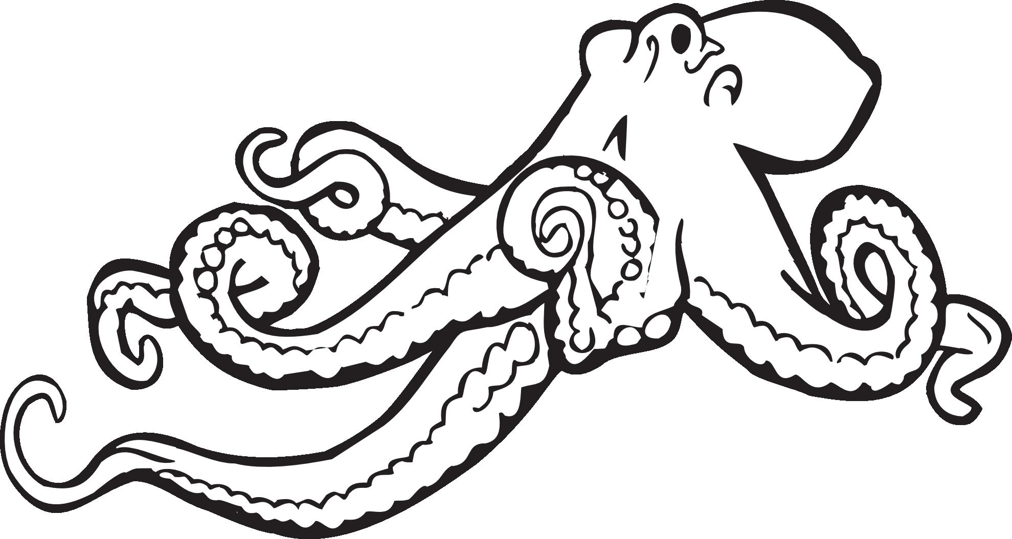 Octopus coloring #13, Download drawings
