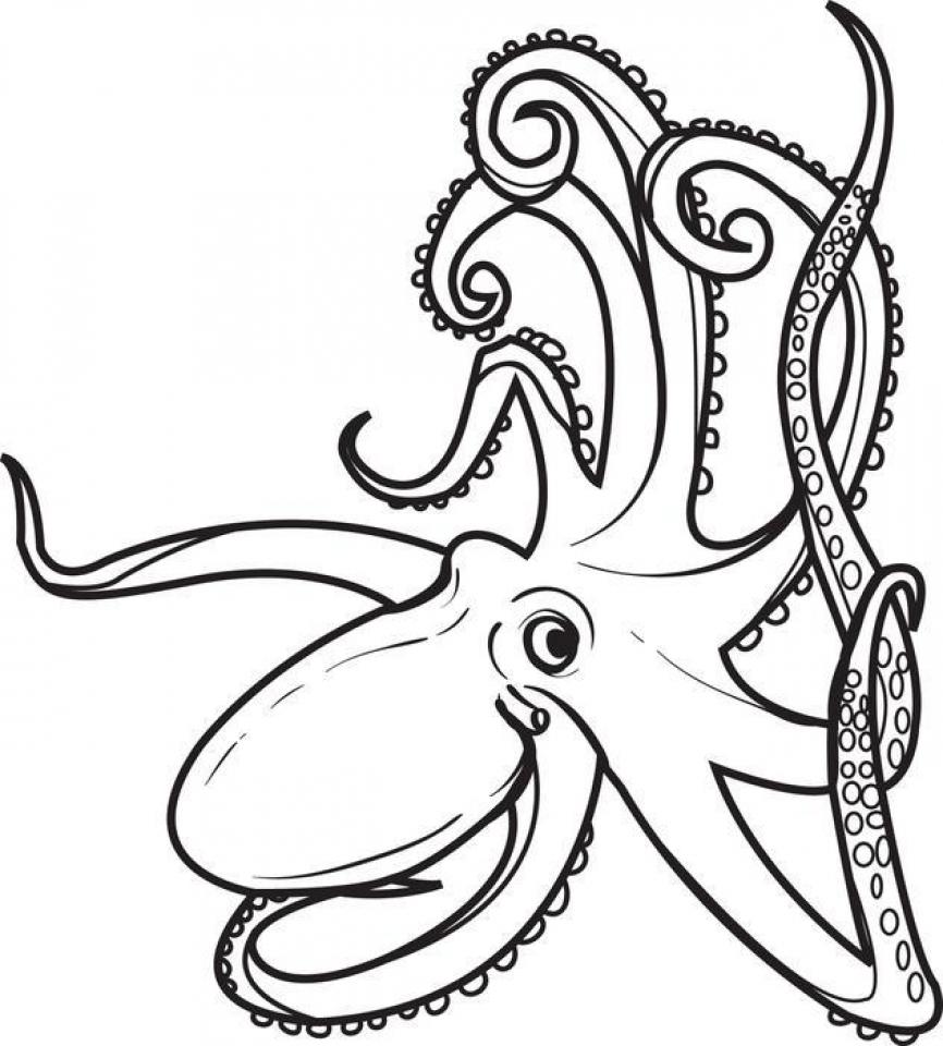 Octopus coloring #1, Download drawings