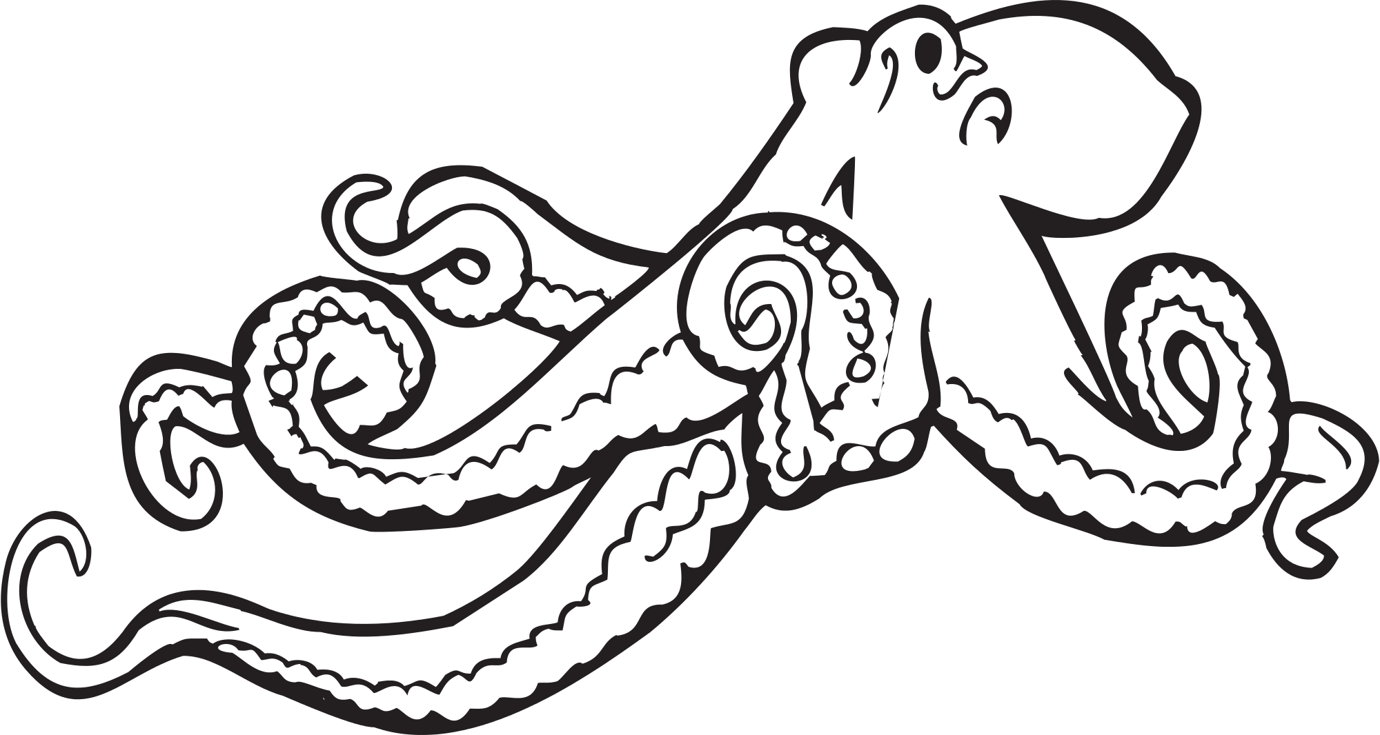 Octopus svg #656, Download drawings