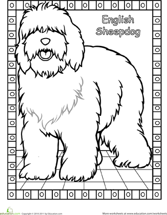 Old English Sheepdog coloring #2, Download drawings