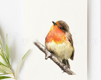 Old World Flycatcher clipart #5, Download drawings