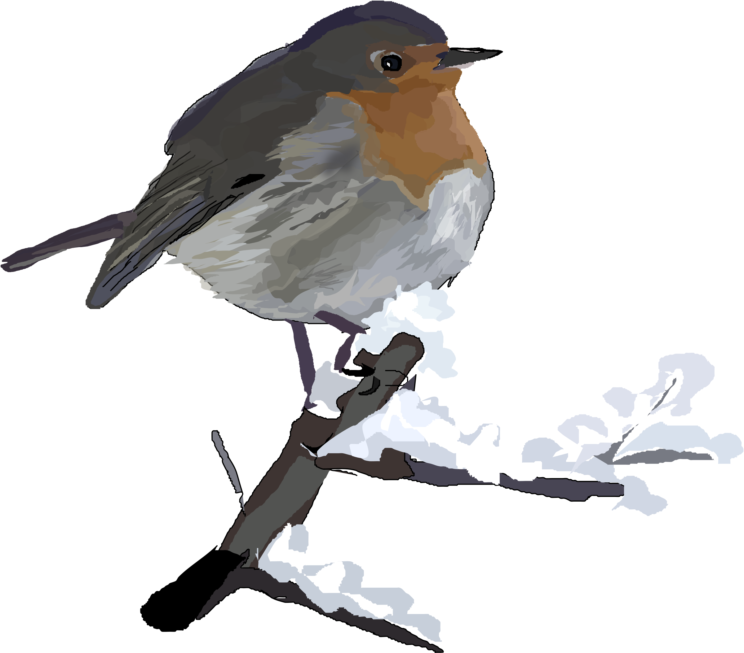 Old World Flycatcher clipart #4, Download drawings