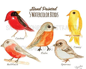 Old World Flycatcher clipart #3, Download drawings