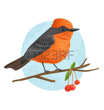 Old World Flycatcher clipart #17, Download drawings