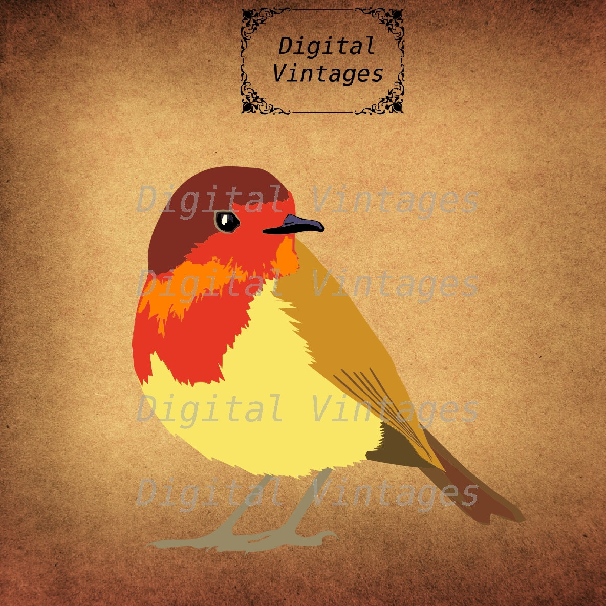 Old World Flycatcher svg #16, Download drawings