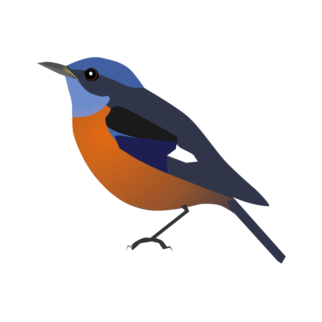Old World Flycatcher svg #11, Download drawings