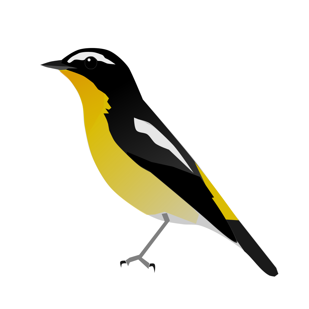Old World Flycatcher svg #19, Download drawings