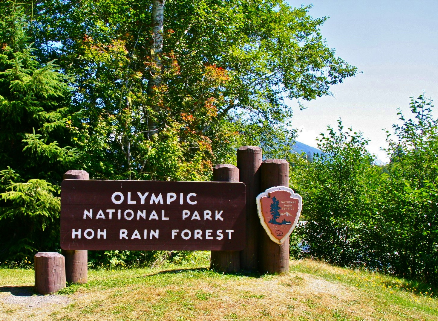 Olympic National Park clipart #6, Download drawings