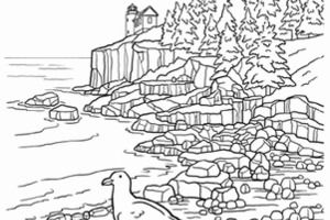 Olympic National Park coloring #1, Download drawings