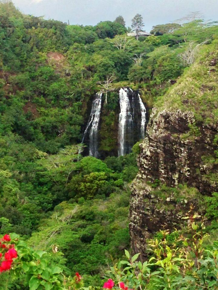 Opaeka'a Falls clipart #11, Download drawings