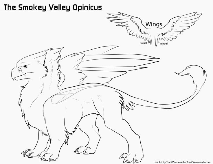 Opinicus coloring #7, Download drawings