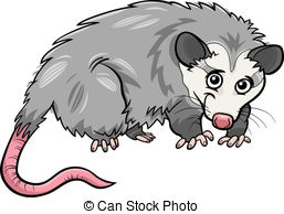 Opossum clipart #17, Download drawings