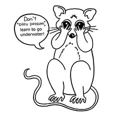 Opossum coloring #9, Download drawings