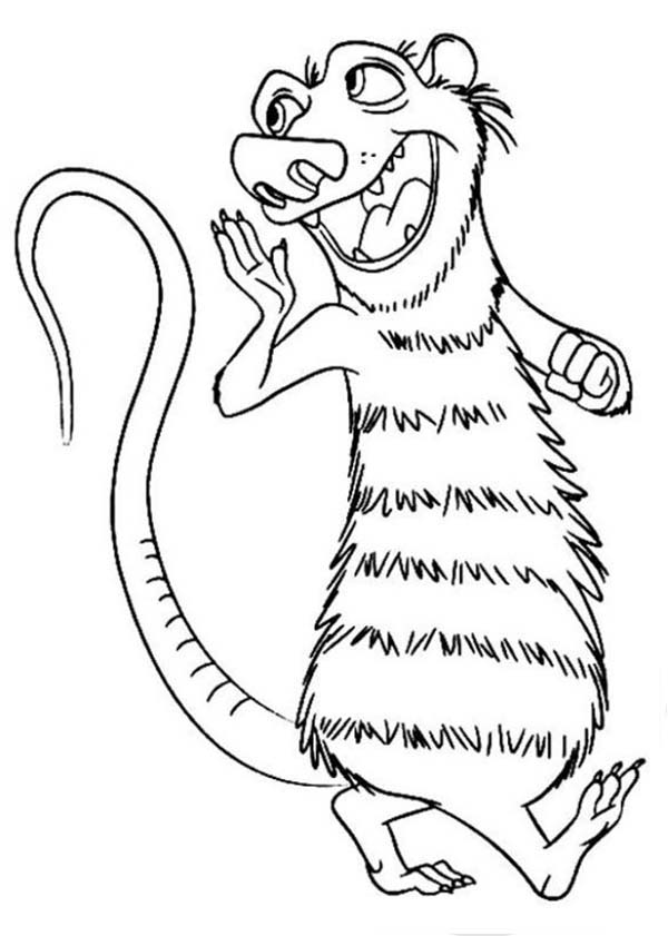 Opossum coloring #14, Download drawings