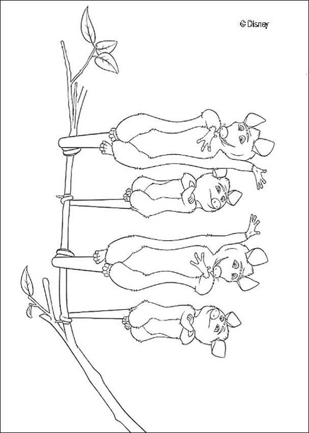 Opossum coloring #2, Download drawings