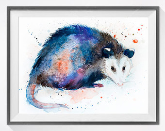 Opossum svg #1, Download drawings