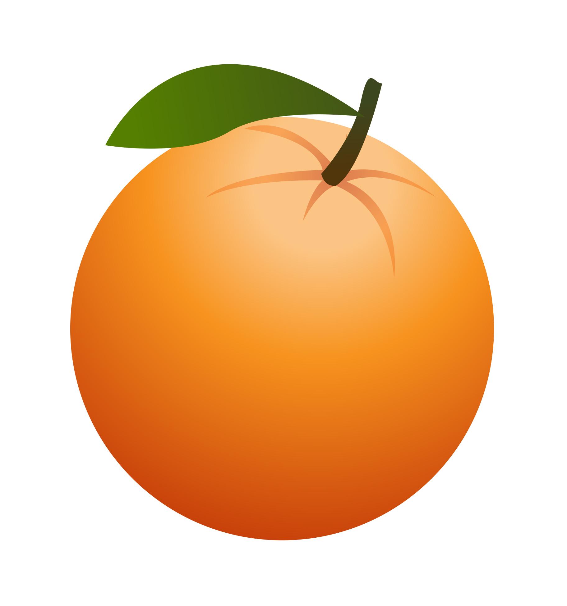 Orange clipart #9, Download drawings
