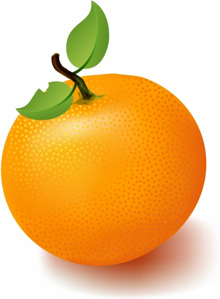Orange clipart #17, Download drawings