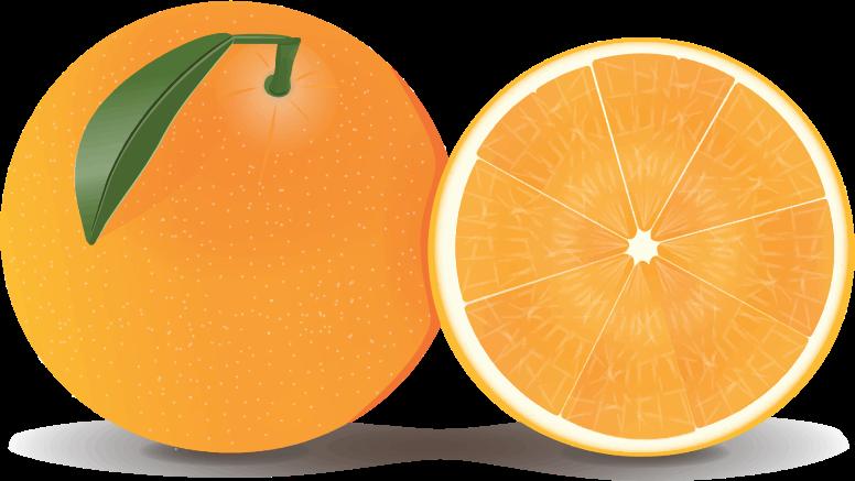 Orange clipart #14, Download drawings