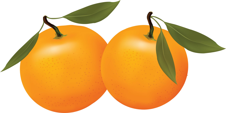 Orange clipart #13, Download drawings