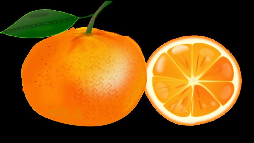 Orange clipart #6, Download drawings