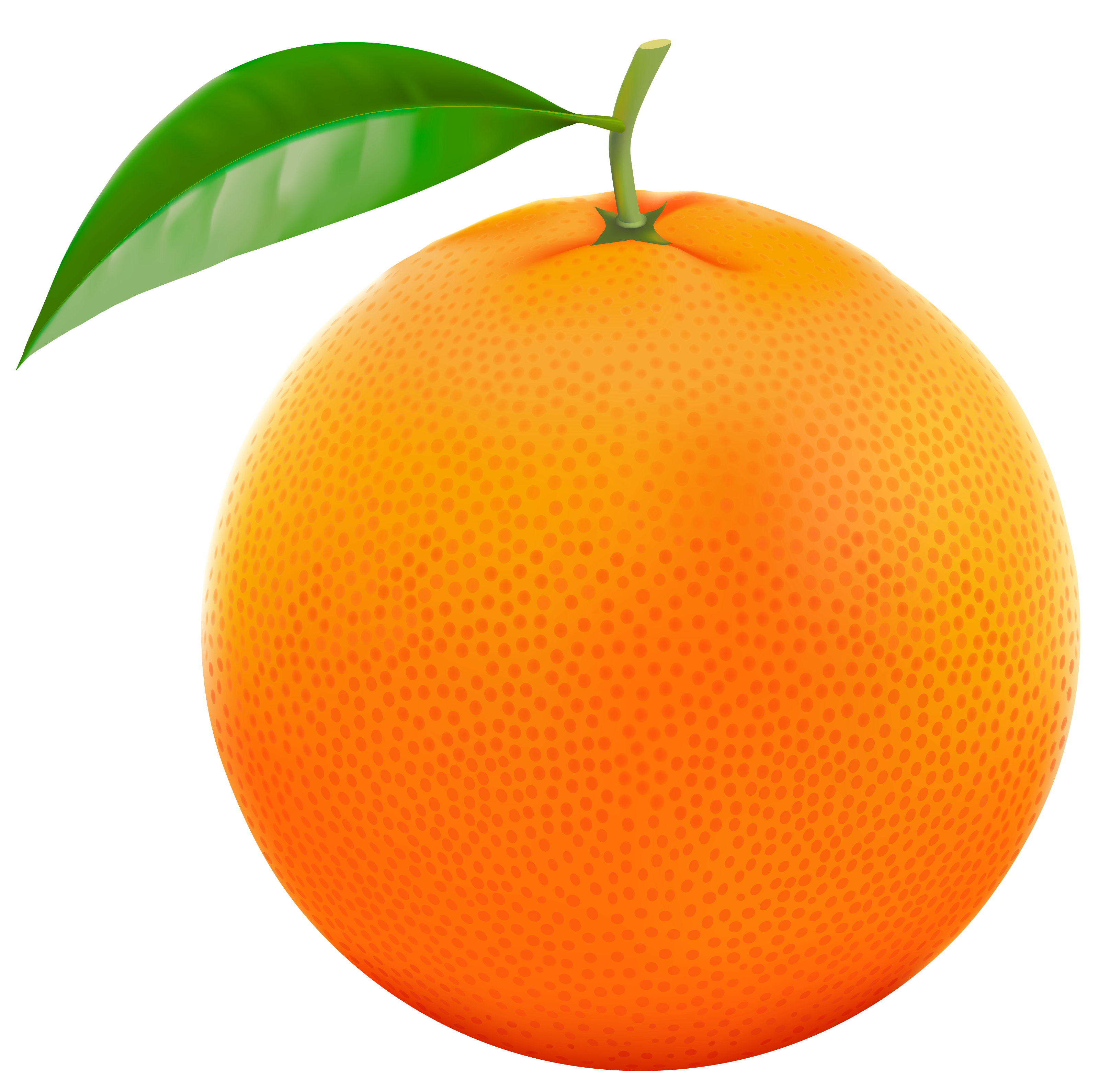 Orange clipart #1, Download drawings
