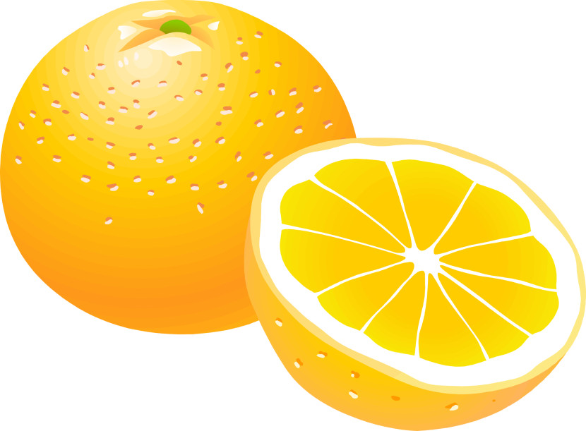 Orange clipart #18, Download drawings